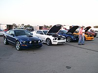 Bold Moves Mustang Club
